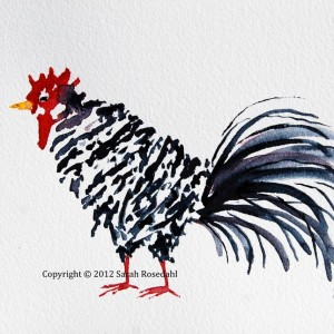 Black & White Rooster